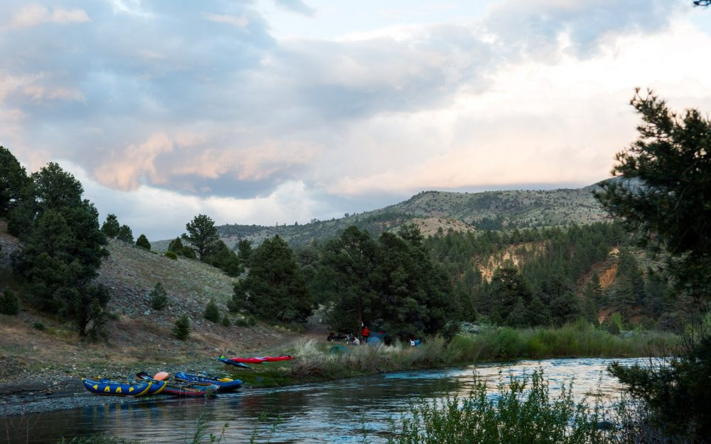 Camping on the East Fork Carson RIver